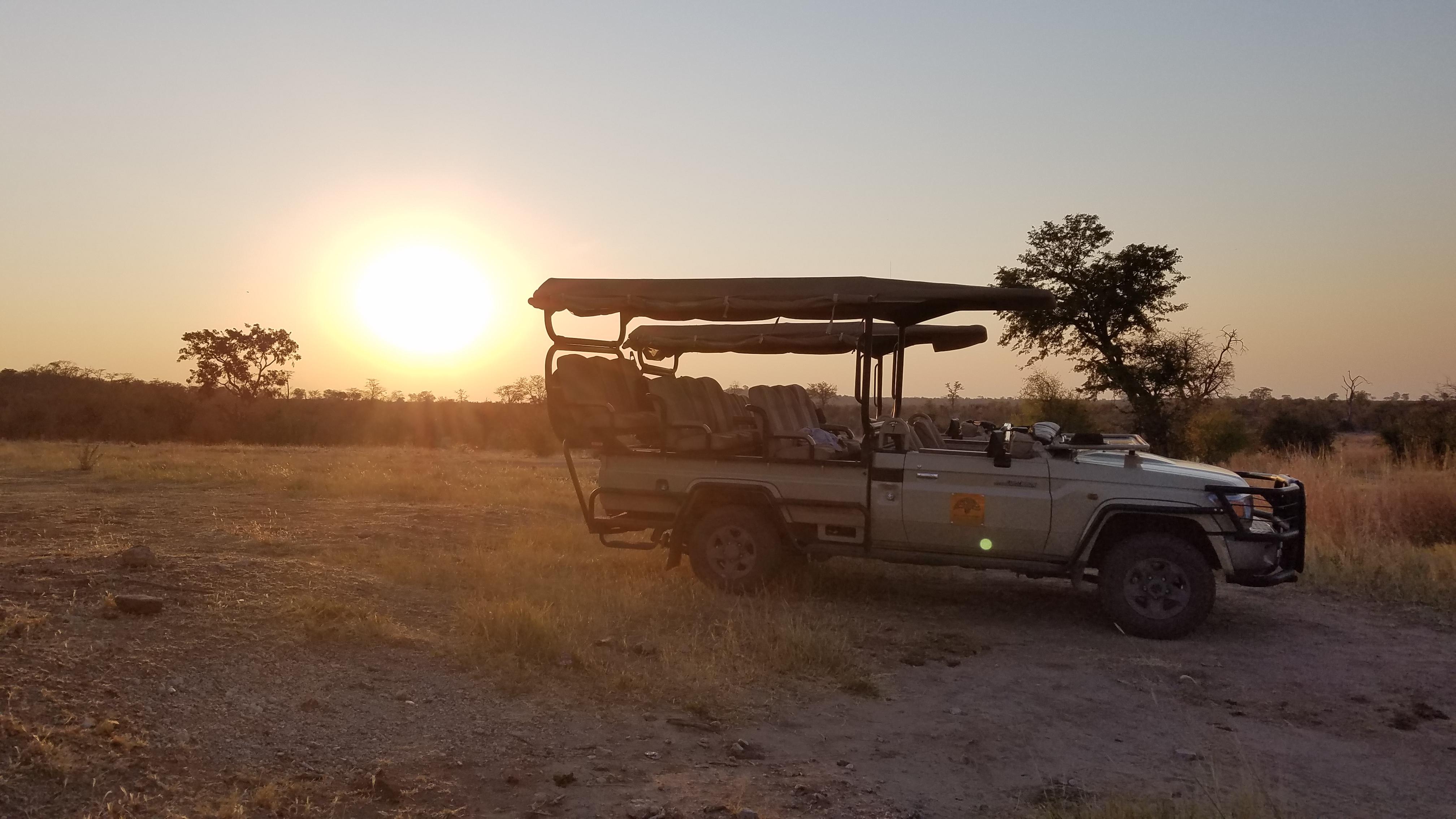 8 days African Safari!